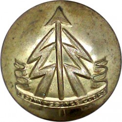 Gloucestershire Regiment - Officers' Pattern 14mm with Queen Elizabeth's Crown. Bronze Military uniform button