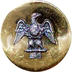 Royal Irish Fusiliers 20mm Flat Mounted  Silver-plate and gilt Military uniform button