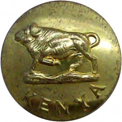 Indian Engineers 19mm - 1922-1947 Brass Military uniform button