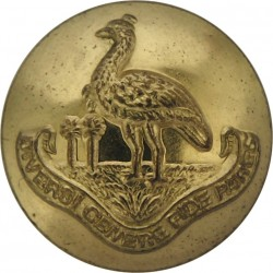 Westminster Dragoons (2nd County Of London Yeomanry) 16mm - Black - No TY Plastic Military uniform button
