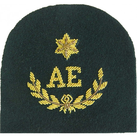 Royal Marines AE In Wreath+ 1 Star: Assault Engineer Trade: Gold On Lovat  Bullion wire-embroidered Marines or Commando insignia