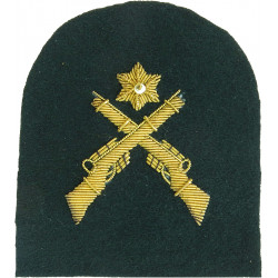 Royal Marines Platoon Weapons: Rifles + 1 Star Trade: Gold On Lovat  Bullion wire-embroidered Marines or Commando insignia