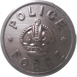 Devon Constabulary 24mm - 1952-1966 with Queen Elizabeth's Crown. Chrome-plated Police or Prisons uniform button