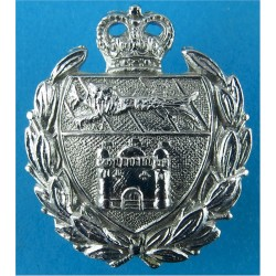 Norfolk Joint Constabulary Collar Badge 1968-74 with Queen Elizabeth's Crown. Chrome-plated UK Police or Prison insignia