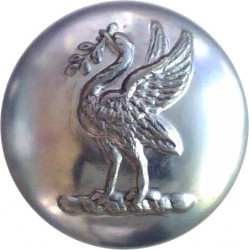 Liverpool Airport Police (Liver Bird) 16mm - 1961-1972  Chrome-plated Police or Prisons uniform button