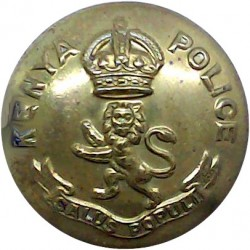 Somerset Constabulary 17.5mm - 1952-1967 with Queen Elizabeth's Crown. Chrome-plated Police or Prisons uniform button