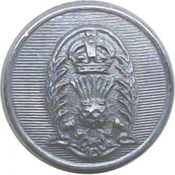 Swansea Police 21mm - 1952-1969 with Queen Elizabeth's Crown. Chrome-plated Police or Prisons uniform button