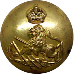 British South Africa Police 19.5mm with King's Crown. Gilt Police or Prisons uniform button