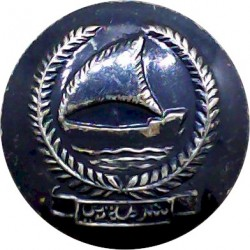 British South Africa Police (BSA / Lion / Police) 17mm Brass Police or Prisons uniform button