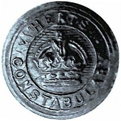 USA: Massachusetts: Chicopee Police Department 23mm  Gilt Police or Prisons uniform button