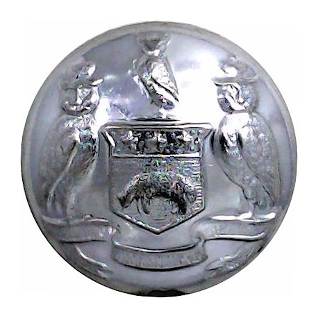 British Fire Services Association 24mm  Chrome-plated Fire Service uniform button