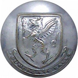 Dewsbury Fire Brigade 23.5mm - Post-1948 Chrome-plated Fire Service uniform button
