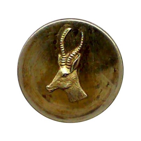Cunard White Star Line - Shipping Button - Plain Rim 24.5mm  Gilt Merchant Navy or Shipping uniform button