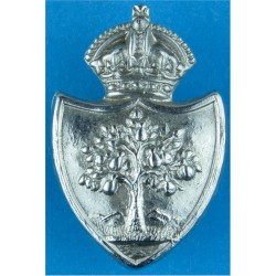 Ipswich County Borough Police - Collar Badge 23mm High - Pre-1967 Chrome-plated UK Police or Prison insignia