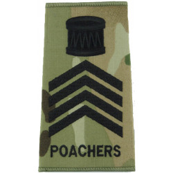 Drum Major - Royal Anglian 2nd Bn - Poachers Black On MTP Camo  Embroidered Musician, piper, drummer or bugler insignia