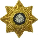 Officers' Collar Badges
