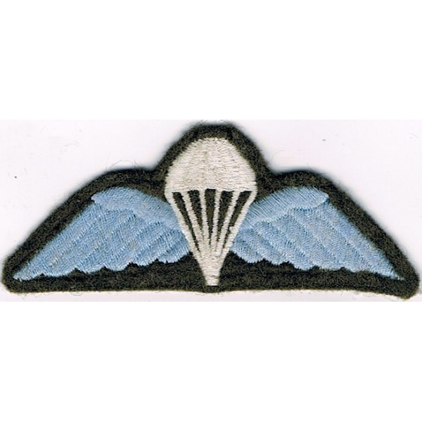 Parachute Jump Wings & Badges