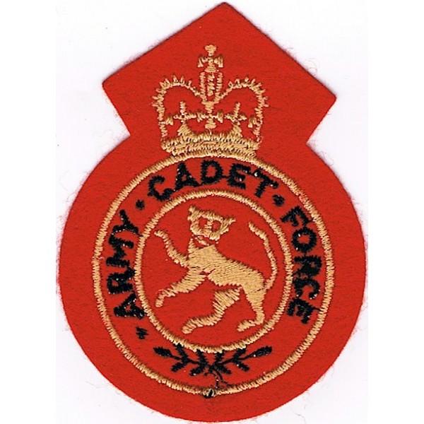Cadet, Training or School